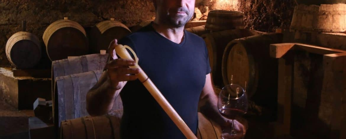 Producer Spotlight – Baccanti – Wine